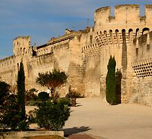 Walls of Old Avignon * by Laurel Talabere