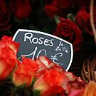 ROSES by Gilad