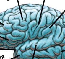 Nursing Student Humor Brain Sticker