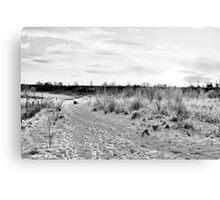 Path Round the Field Canvas Print