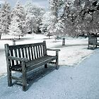 Infra-red Photo of Empty Park Bench by Enchanted Studios