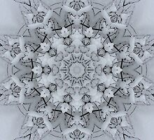 The Snow Flake by swaby