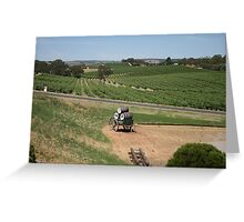 Miles and Miles from Maxwells Mead, McLaren Vale Greeting Card