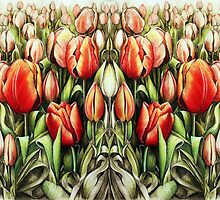 Mirrored Field of Tulips in Colour by Heidi Cooper Smith