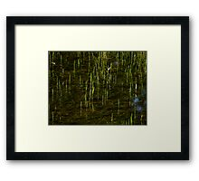 Grass in Water Framed Print