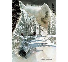 The Wilderness Spirit Photographic Print