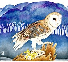 Winter Barn Owl by redgoldsparks