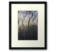 Base Elements : Grass Seeds Framed Print