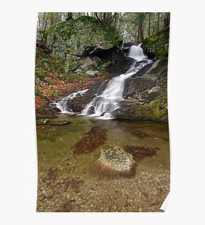 Small Mountain Stream - Vermont  Poster