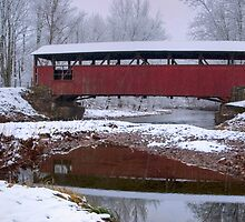 Lairdsville Covered Bridge In Winter by Gene Walls