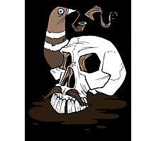 Colonel Pigeonpipe's Skull Photographic Print