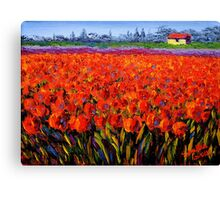 Holland Tulip Field Canvas Print