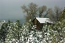 Winter in Pinos Altos by Vicki Pelham