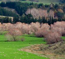 a desolate New Zealand landscape Sticker