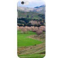 a desolate New Zealand landscape iPhone Case/Skin