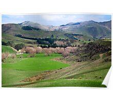 a desolate New Zealand landscape Poster