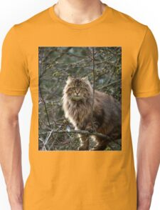 Maine Coon Tabby Cat Unisex T-Shirt