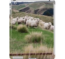 an exciting New Zealand landscape iPad Case/Skin