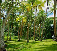 Palm Tuesday  by Anna  Ellis