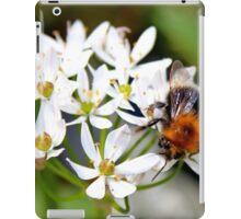 "Bee on White Allium ""Graceful"" iPad Case/Skin"