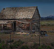 Cabin For Sale - Needs a Little TLC ☺ by Dyle Warren