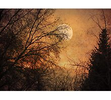Gilded Sunset Photographic Print