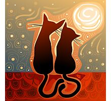 couple of cats in love on a house roof Photographic Print