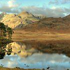 Blea Tarn in Autumn by Jamie  Green