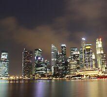 a sprawling Singapore landscape by beautifulscenes