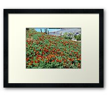 Flaming Flowers. Framed Print