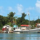 Docked Boats at Antigua by Susan Savad