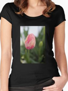 Pink and Yellow Tulip Women's Fitted Scoop T-Shirt