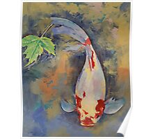 Koi with Japanese Maple Leaf Poster