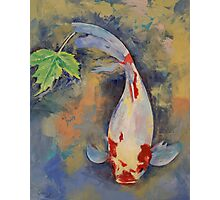 Koi with Japanese Maple Leaf Photographic Print