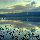 Early Morning On Loch Morlich by VoluntaryRanger