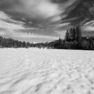 Bear Valley 1 by flyfish70