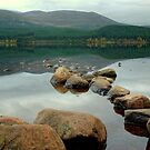 Rocks in the Loch by VoluntaryRanger
