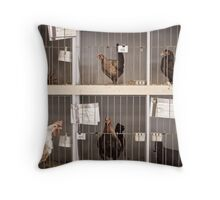 Champion Poultry Throw Pillow