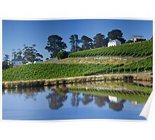 Tinderbox Vineyard Poster