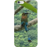 an exciting El Salvador