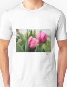 Soft Tulips T-Shirt