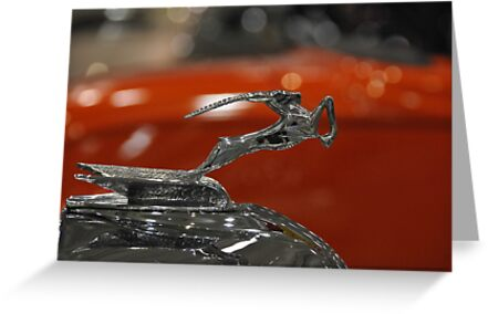 Hood Ornament by SherryLynn58