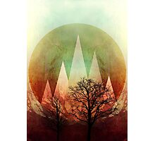 TREES under MAGIC MOUNTAINS I  Photographic Print