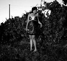 vineyard model bw by ma2castle