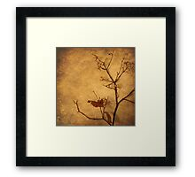 Contemplation (without words) Framed Print