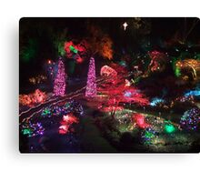 Night in the Sunken Garden(1) Canvas Print