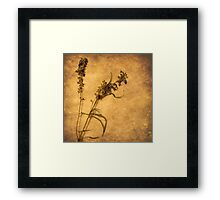Nature Speaks (without words) Framed Print