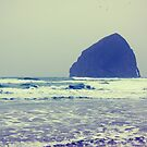 gorilla head . pacific city . oregon by sara montour
