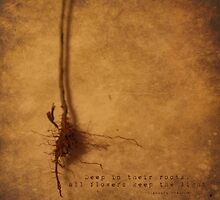 Roots by Tia Allor-Bailey