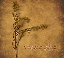 Weeds by Tia Allor-Bailey